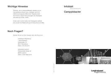 Infoblatt Campylobacter - im Landkreis Ravensburg