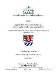 Jugendhilfeplan des Landkreises Passau ... - Landkreis Passau