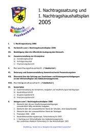 I. Nachtragssatzung und I. Nachtragshaushaltsplan 2005