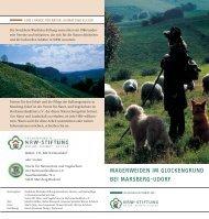 PDF (949 KB) - NRW-Stiftung