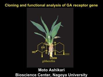 Moto Ashikari Bioscience Center, Nagoya University