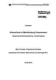 Artenschutz in Mecklenburg-Vorpommern - Landesamt für Umwelt ...