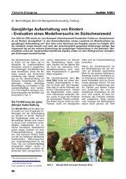 Ganzjährige Außenhaltung von Rindern - Naturpark Südschwarzwald