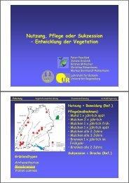 Nutzung, Pflege oder Sukzession: Entwicklung der Vegetation