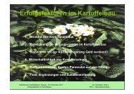 Erfolgsfaktoren im Kartoffelanbau [Download,*.pdf, 0,10 MB