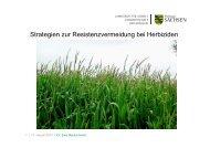 Strategien zur Resistenzvermeidung bei Herbiziden - Landwirtschaft ...
