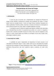 Características da Carne de Frango - AGAIS