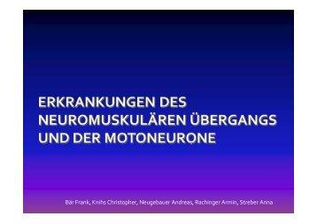 Bär Frank, Knihs Christopher, Neugebauer Andreas, Rachinger ...