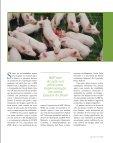 IMPREVISTOS - Revista BRF - Page 5