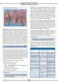 Miopatia Peitoral Profunda - Aviagen - Page 4