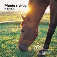 Pferde richtig halten - Tierdatenbank.ch
