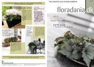 Floradania Magasin nr. 51, 2008 Efterår