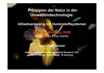 Prof. Ulrich Stottmeister