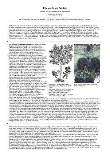 apfelbaum pflanzen bibelgarten. Black Bedroom Furniture Sets. Home Design Ideas