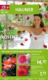 Rosen - 1A Garten Hauner