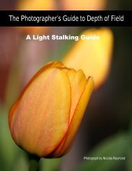 The Photographer's Guide to Depth of Field - Light Stalking