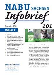 Infobrief 101 - (NABU) Landesverband Sachsen e. V. - NABU Sachsen