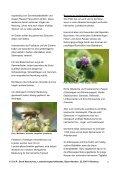 BN informiert: Naturschutz vor der Haustür - Der Wildgarten - Bund ... - Seite 6