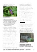 BN informiert: Naturschutz vor der Haustür - Der Wildgarten - Bund ... - Seite 7