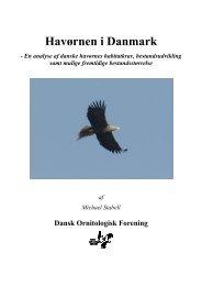 Havørnen i Danmark - Dansk Ornitologisk Forening