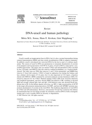 Bodil Kavli - DNA-uracil and human pathology - itslearning