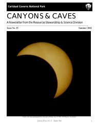 CANYONS & CAVES - National Park Service