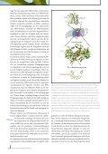 fotolia/Claudio Calcagno - Freie Universität Berlin - Seite 7