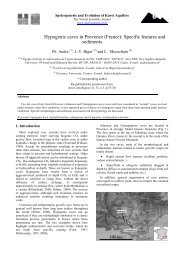 Hypogenic caves in Provence (France): Specific ... - Speleogenesis