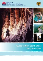Guide to New South Wales Karst and Caves - Department of ...