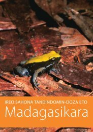 Frog Booklet - Malagasy Version - Madagascar Fauna Group