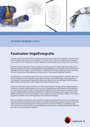 Faszination Vogelfotografie - Vogelwarte - Fotowettbewerb ...