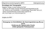 Magnetresonanztomographie (MRT) Datengewinnung Grundlagen ...
