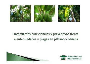 Tratamiento del plátano y la banana - Biotecme.com
