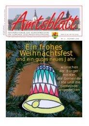 Dez 2009 - Gemeinde Zeiselmauer-Wolfpassing