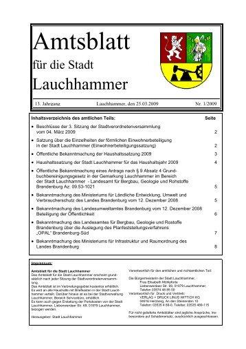 Amtsblatt 01/2009 - Stadt  Lauchhammer