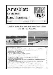 Amtsblatt 04/2001 - Stadt Lauchhammer