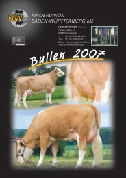 Bullenkatalog 2007 Fleckvieh - Rinderunion Baden-Württemberg e.V.