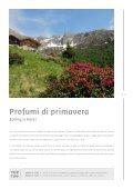 Sommerkatalog 2012 italienisch - Page 7