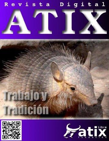 atix21