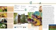 Dem Wasserdrachen auf der Spur - Naturpark Teutoburger Wald ...