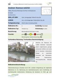 Rosenaue 1 - 15 (PDF) - Kreis Soest