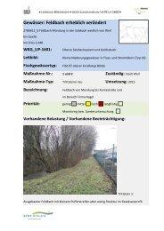 Feldbach 1 - 8 (PDF) - Kreis Soest