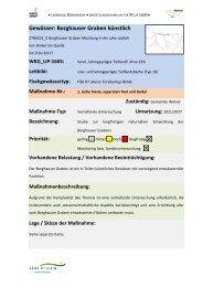 Borghauser Graben (Maßnahmenblatt) (PDF) - Kreis Soest