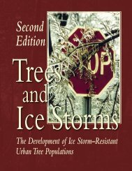 Trees and Ice Storms - Northeastern Area - USDA Forest Service