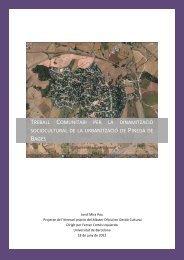 Treball Comunitari per la dinamització sociocultural de la ...