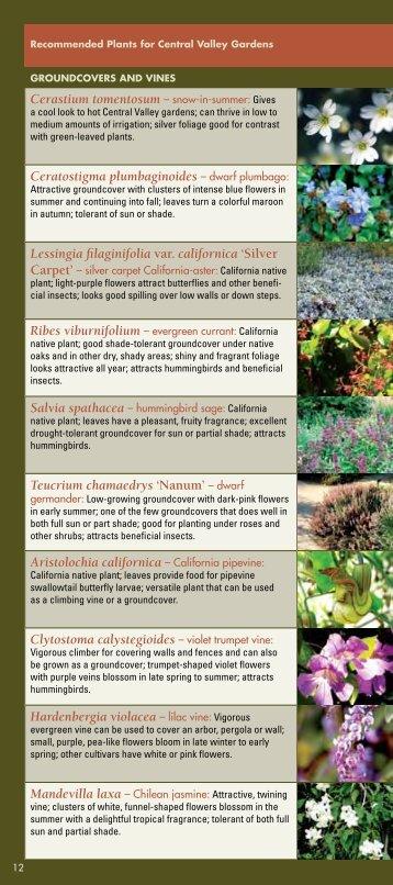 Groundcovers and - the UC Davis Arboretum