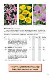 Blumenzwiebeln C-D