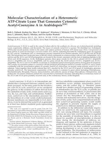 Molecular Characterization of a Heteromeric ATP ... - Plant Physiology
