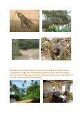 Sri Lanka / Malediven - Ihr Reiselotse Herbert Bröckel Reisebüro Ihr ... - Seite 7