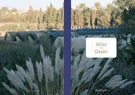 Atlas — Oasen - René Furer Architektur Hefte